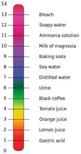 Red Cabbage Juice Indicator Chart Red Cabbage Chemistry Activity Teachengineering