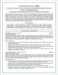 Resume Ceo Template Resume Examples Sample Bio Professional Ceo Cv