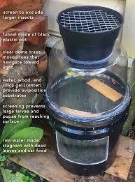 Diy Light Trap Diy Trap To Kill Pregnant Mosquitoes Colin Purrington