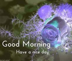 amazing hd good morning wishes images