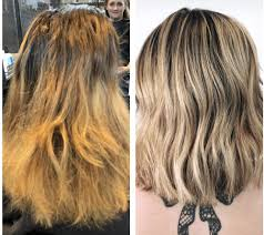 rush by dino palmieri 11 photos 24 reviews hair salons 215 s water st kent oh phone number last updated december 17 2018 yelp