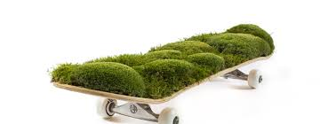 Skateboards Designs Our Favorite Skateboard Designs From Frogs Deckxdesign