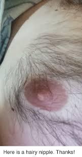 Photo's of hairy nipples