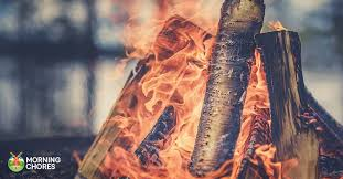 Best Firewood Chart 22 Of The Best Firewood Choices You Can Burn This Winter