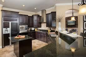 Nice Kitchen Designs Photo Property Home Design Ideas Magnificent Nice Kitchen Designs Photo