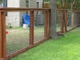 dog fence wire above ground