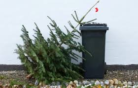 ... Taking Down the Christmas Tree. The right method keeps clean-up to a  minimum  and makes next year so much easier.