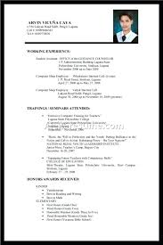 Resume Job Experience Format Sample Resume No Work Experience Sample