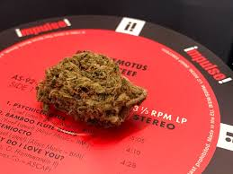 Strain Review Jager Marijuana Reviews Colorado Springs