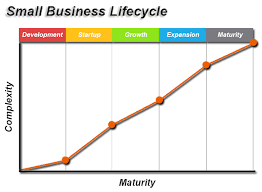 What Are The Stages Of A Business Lifecycle And Its