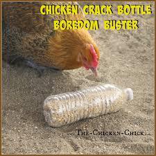 20 Winter Boredom Busters for Backyard Chickens Empty plastic.