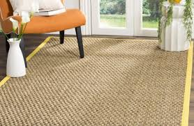 there is no possible way to keep rugs completely clean even if you are the neatest of people so when it comes to ing an area rug you will definitely