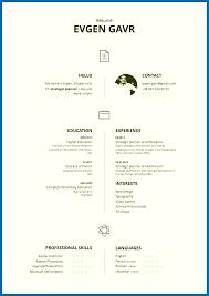 Two Column Resume Template Amazing Design 2 Column Resume