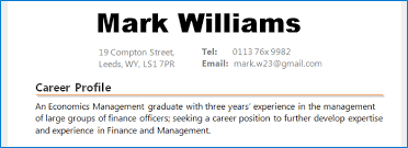 Career Profile Resume Examples Examples Of Resumes