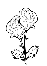 You will love these spring and fall rose bouquets, single blooms, primroses, rose windows, and compass roses; Coloring Pages Beautiful Rose Coloring Pages
