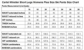 Women S Jean Size Chart Cartel Whistler Womens Plus Size Ski Pants Sl Purple Sizes 20 22