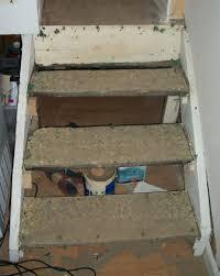 basement stairs storage. Basement Stairs Storage L