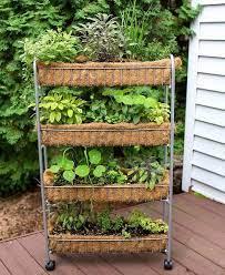 vertical garden diy small herb gardens