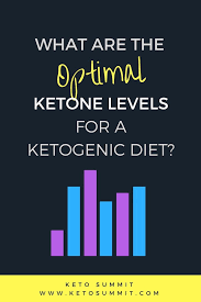 Whats A Ketone Blood Test And Do You Need One To Succeed