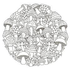 circle shape pattern with fantasy mushrooms for coloring book black and white background vector ilration stock vector colourbox