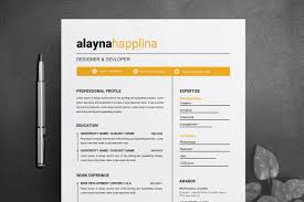 2 Page Cv Template 2 Page Resume Template Cv Template
