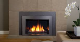 Inspiring Image Of Home Interior Decoration With Contemporary Insert Gas  Fireplace : Extraordinary Image Of Home ...