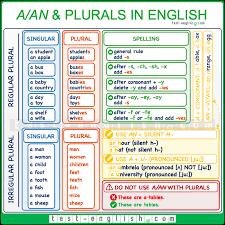 A An Plurals Singular And Plural Forms