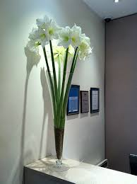 Office Flower Corporate Flowers Office Business Reception