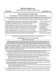 Cfo Sample Resume Chief Financial Officer Resume Executive Resume