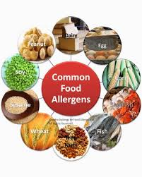 Food Allergy | Hormone Testing | Thyroid and Adrenal — Dr.Vera Singleton