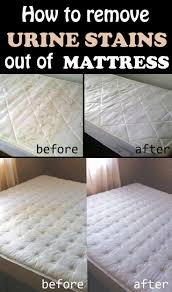stained mattress. 19 Tips To Learn How Get Stains Out   Crazy Houses, Mattress Pad And Stained