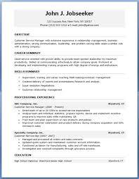 Resume Templates For It Professionals Danetteforda