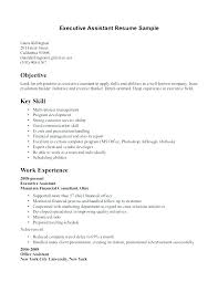 Key Skills Resume Administrative Assistant Resume Examples Office Assistant Cocinacolibri Com