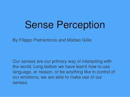 tok sense perception presentation sense perception by filippo pietrantonio and matteo gillio our senses are our primary way of interacting