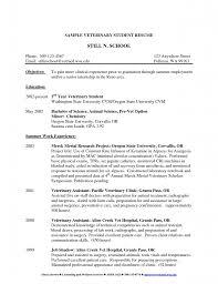 Resume Veterinary Internship