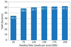 Soybean Seeding Rate