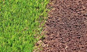 Image result for Dbacks field free turf images