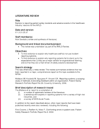 Literature review pdf