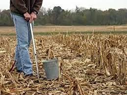 Soil Sampling In The Spring Vs Fall Agronomic Crops Network