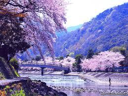 72 Japan Nature Wallpaper On Wallpapersafari