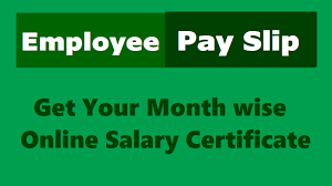 Employee Salary Slip Sample Simple Online Employee Pay Slips Salary Certificate For TS Employees