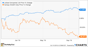 Worried Canopy Growth Usa Stock Is Headed Further Down Do