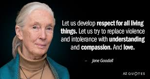 Jane Goodall Quotes Delectable TOP 48 QUOTES BY JANE GOODALL Of 48 AZ Quotes