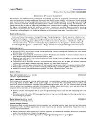 Consulting Resume Examples With Example Resumes Sonicajuegos Com