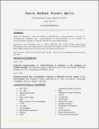 Power Word For Resumes 45 Lovely Power Phrases For Cover Letters Malcontentmanatee