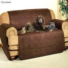 beautiful couch for dogs full size of furniture pet covers sofa for dogs lovely couch