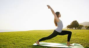 <b>Yoga</b> Health Benefits: Flexibility, Strength, Posture, and More