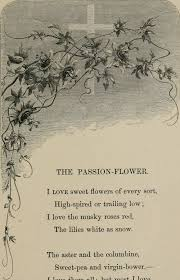 Paper Flower Lyrics File Birds And Flowers Or Lays And Lyrics Of Rural Life 1873