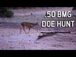 (modern warfare season 4 barrett) ♢ more modern warfare videos. A Missed Shot From A 50 Bmg Still Kills A Deer