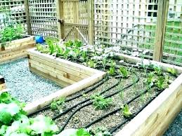 raised bed watering system garden flower sprinklers sprinkler irrigation pvc raised bed watering system